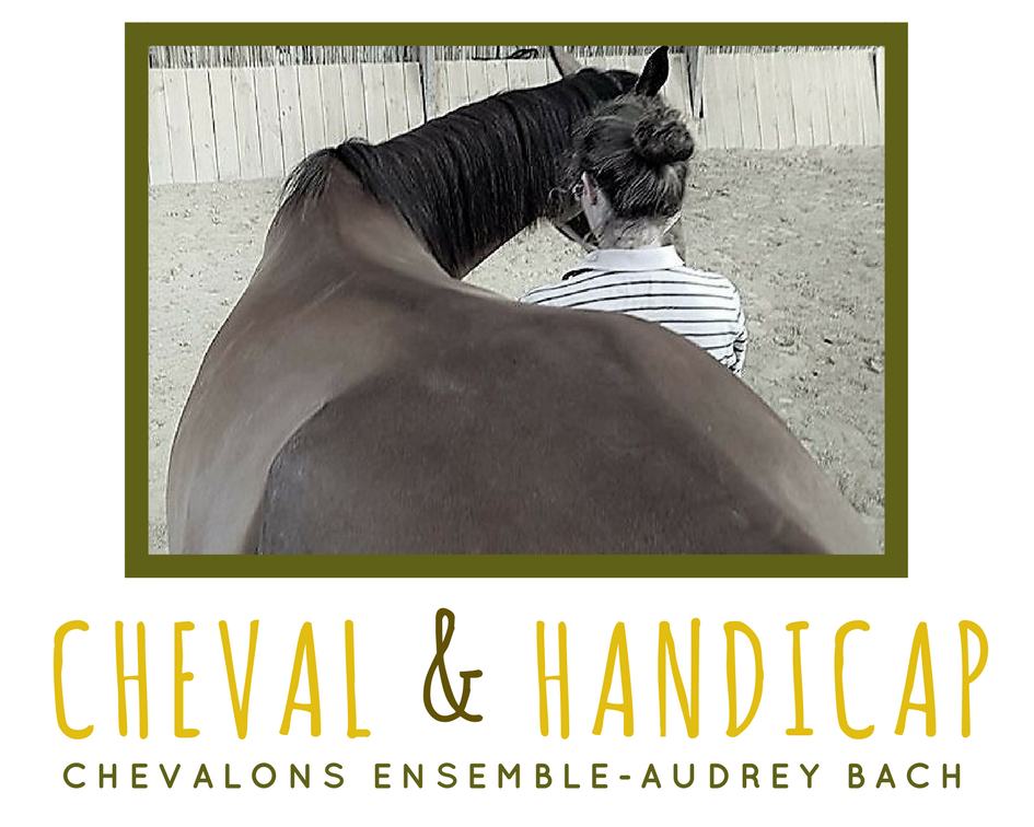 cheval & handicap